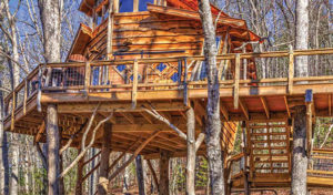 Tree House at Banning Mills